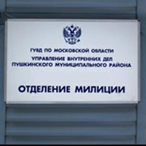 Отделения полиции Дагестанских Огней