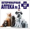 Ветеринарные аптеки в Дагестанских Огнях